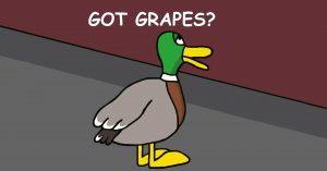 Got Grapes?